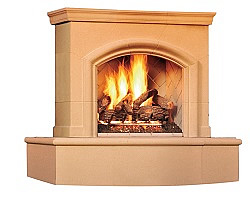 Phoenix Back Vent Fireplace
